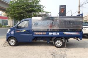 Xe tải Tera 100 tải trọng 990Kg